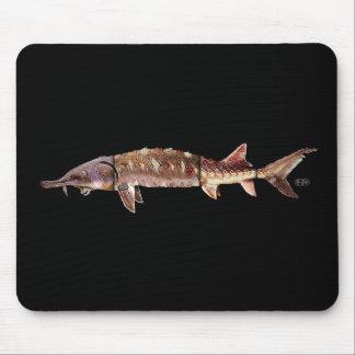 Gulf Sturgeon - Acipenser oxyrinchus desotoi Mouse Pads