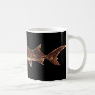 Gulf Sturgeon - Acipenser oxyrinchus desotoi Coffee Mugs
