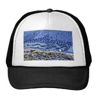Gull And Cormorants Mesh Hat