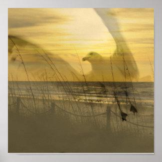 Gull By The Sea Print