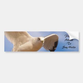 Gull Car Bumper Sticker