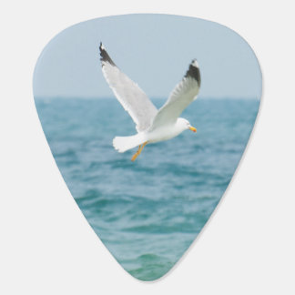 Gull flying above sea guitar pick