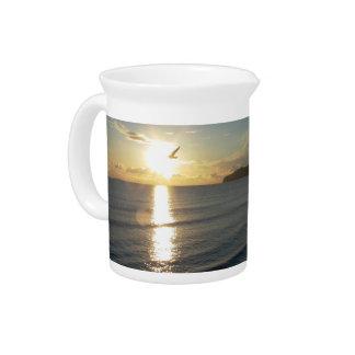 gull flying toward the sun pitchers