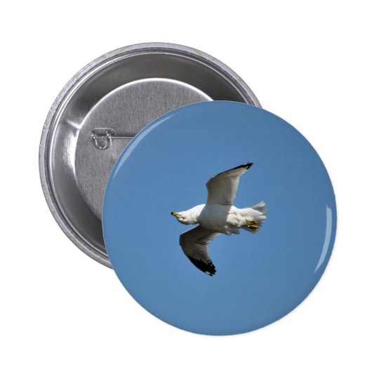 Gull Flying Upside Down Funny Wildlife Photography Button