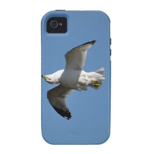 Gull Flying Upside Down Funny Wildlife Photography Vibe iPhone 4 Cases