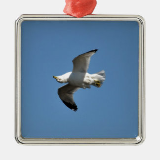 Gull Flying Upside Down Funny Wildlife Photography Square Metal Christmas Ornament