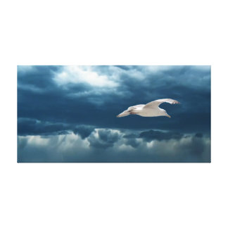 Gull in a Storm Stretched Canvas
