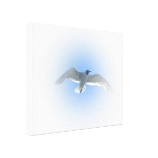 Gull in Flight 2 Wrapped Canvas