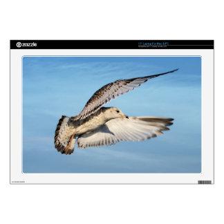 Gull in Flight Skin For Laptop