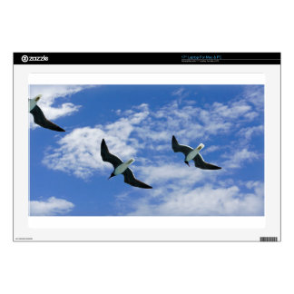 gull in the sky decal for laptop