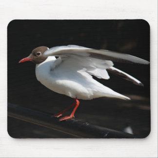 Gull Mousepads