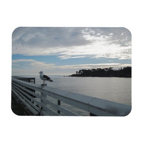 Gull on Pier at San Simeon State Beach Magnet