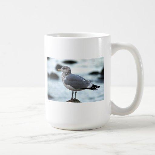 Gull on Rock Coffee Mugs