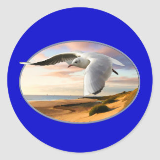 Gull on the Wing Over Beach Classic Round Sticker