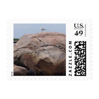 Gull Rock Stamp
