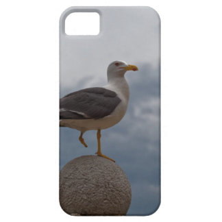Gull with one leg on a ball of stone. iPhone SE/5/5s case