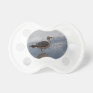 Gull with one leg on a ball of stone. pacifier