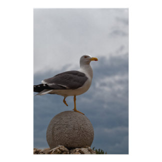 Gull with one leg on a ball of stone. stationery