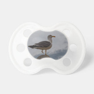 Gull with one leg pacifier
