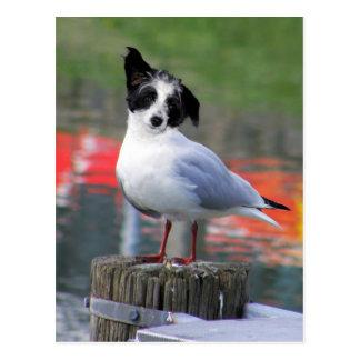 Gulldog Postcard