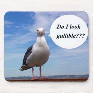 gullible seagull mouse pad