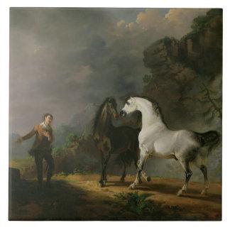 Gulliver Addressing the Houyhnhnms, 1769 (oil on c Ceramic Tiles