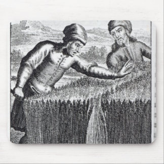 Gulliver es descubierto por un granjero adentro tapetes de ratón