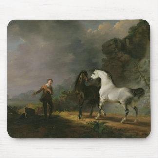 Gulliver que se dirige al Houyhnhnms, 1769 (aceite Tapetes De Raton