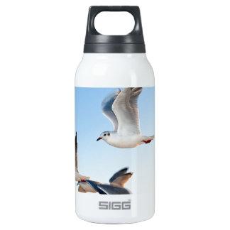 gulls-3 insulated water bottle