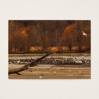 Gulls and Geese ATC Business Card
