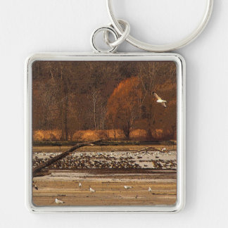Gulls and Geese Keychain