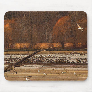 Gulls and Geese Mouse Pad