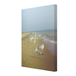 Gulls Awaiting Canvas Print