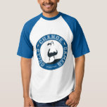 Gulls Change Games Men's Raglan T-Shirt