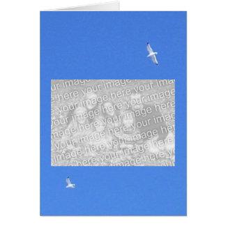 gulls, family_horz_placeholder card