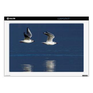 "Gulls flying 17"" laptop decal"