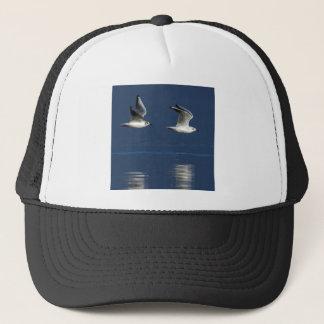 Gulls flying trucker hat