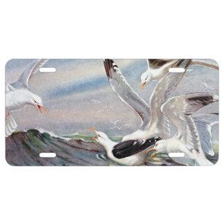 Gulls In Ocean License Plate