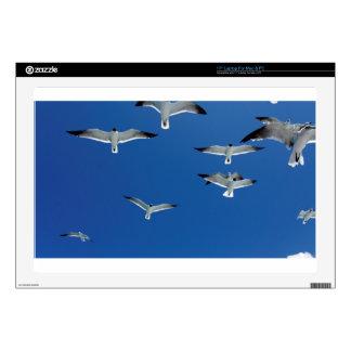 gulls in the sky skin for laptop