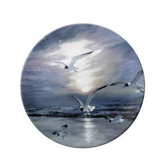 gulls landing dinner plate