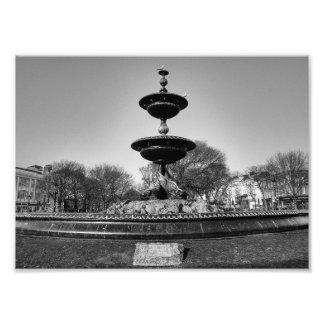Gulls on a Fountain Art Photo