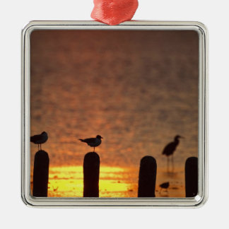 Gulls on pilings in Laguna Madre, South Padre Christmas Tree Ornaments