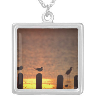 Gulls on pilings in Laguna Madre, South Padre Square Pendant Necklace