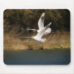 Gulls over the Thames Mousepad