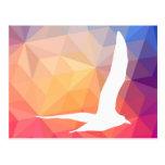 Gulls Pictograph Postcard