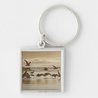 Gulls Taking Flight Silver-Colored Square Keychain
