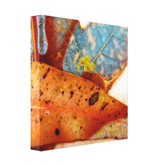 Gum and fire tree leaves by Tribalmysticart Canvas Print