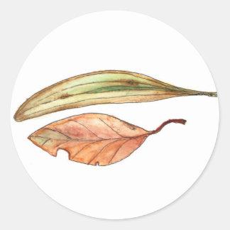Gum Leaves Classic Round Sticker