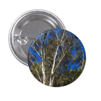 Gum Trees Pinback Button