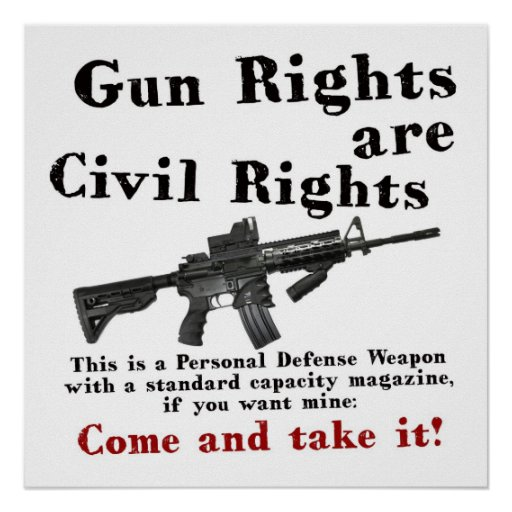 Pro Gun Essay